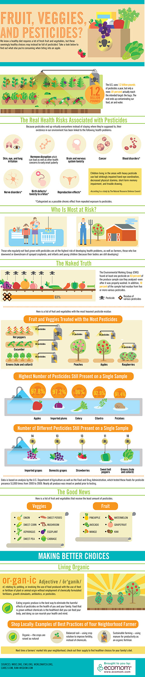 Fruits, Veggies and Pesticides Infographic
